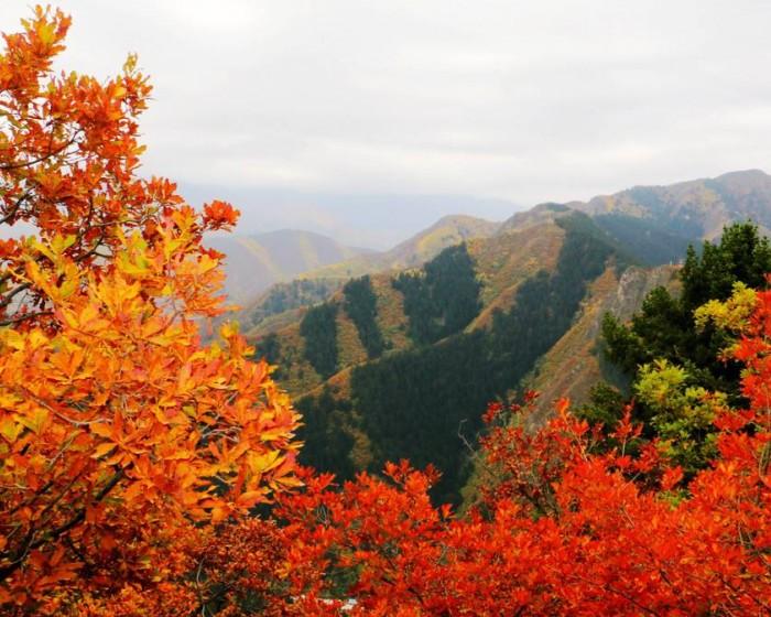 甘肃兰州 · 兴隆山国家森林公园(AAAA)