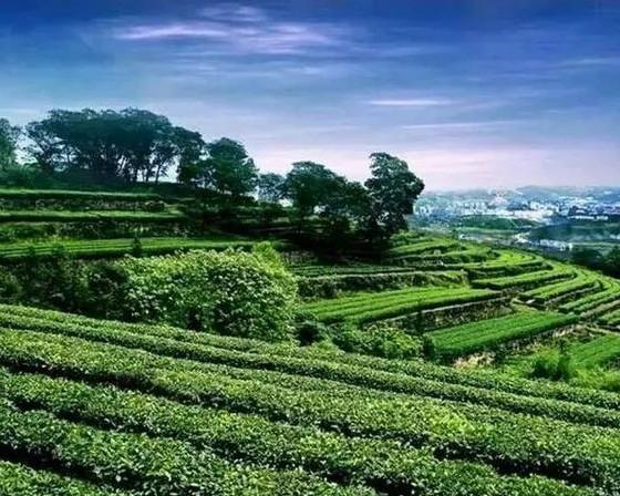 重庆 · 骆崃山景区